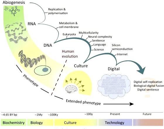 major_evolutionary_transitions_culture_digital1.jpg