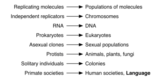maynardsmithszathmary_evolutionary_transitions.png